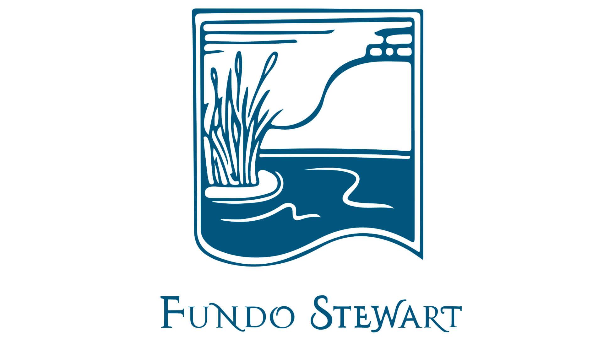 desarrollo-web-de-fundo-stewart